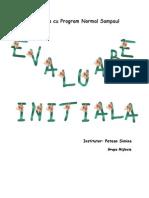 evaluareinitiala gr mijlocie2010_2011