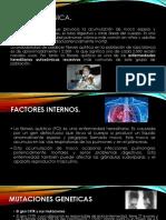 Fibrosis Quistica - W.