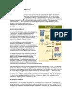 Cómo leer Diagramas P&I.pdf