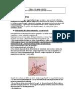 magnetismo.pdf