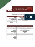 100 Margarita Dorantes n. Formato_curriculum Mdn