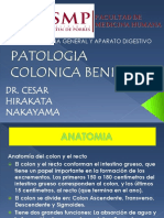 Cirugía General - 17 Colon Benigno