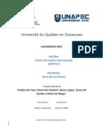 Trabajo Individual - Gestion de Proyectos Interncionales  (MGP7017) - MI20150008 - Maloni Alcantara.pdf