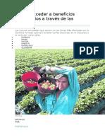 Cómo Acceder a Beneficios Tributarios a Través de Las Zomac