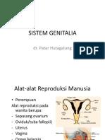 Sistem Genitalia.pptx