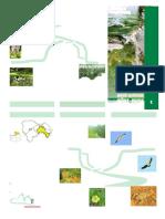 FOLLETO_INFORMACION_GENERAL__05A06.pdf