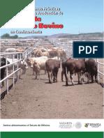 Manual de Bpp en La Produccion de Carne de Ganado Bovino en Confinamiento