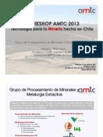 AMTC-Procesamiento-de-Minerales-y-Metalurgia-Extractiva-.pdf