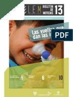 Boletín 13-Proyecto LEM 2017