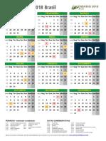 Calendario 2018 Brasil Retrato m