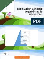 Estimulación Sensorial según Guías de intervención final.pdf