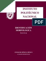 Identificación Morfologia de Beauveria sp (Barret y Hunter 1998 ).