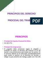 4. Principios Del Derecho Procesal Laboral