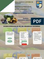 Desarrollo Sostenible Industria