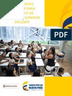 Lineamientos estándar para proyectos FORMACIÓN DOCENTE.pdf