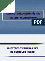 Analisis PVT Muestreo y Validacion.
