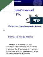 conejos-131213034905-phpapp02
