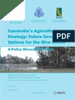 RICE IN KAMBOJA.pdf