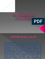 PAVIMENTOS FLEXIBLES (1)