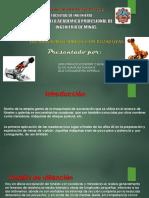 ROZADORAS__PPTX[1]