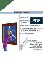 8b.Tipos de movimientos de cargas en campos magnéticos uniformes.pdf