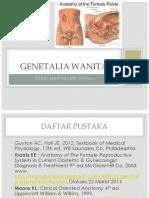 GENETALIA WANITA.pptx