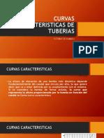 Curva Caracteristica Tuberias