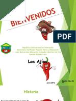 Presentación de Los Ajies