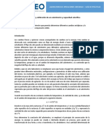 Guía de Práctica 2 - Construccion y Calibracion Calorimetro y Cp