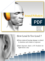 Sound Polution