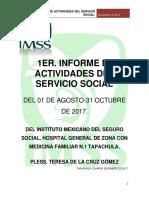 IMSS.docx