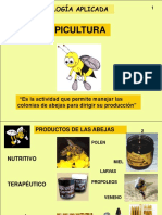 Guion Apicultura 2004