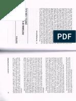 1Patterns of Ethnicization.pdf