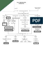 pathway meningitis.doc