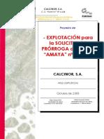 Proyecto Exp Prorroga Amaya
