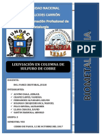 biometalurgia-informe-1-final[1]