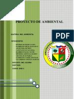 Proyecto Ambientalfin de Ciclo