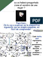 El Cerebro de Una Mujer Diapositivas