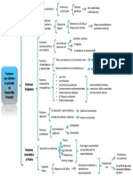 Factores que afectan el período de Desarrollo Prenatal