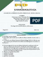 analisisdelaexpresionplasticapreescolar-170619170529