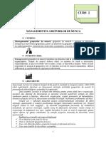 2. Managementul Grupurilor de Muncă