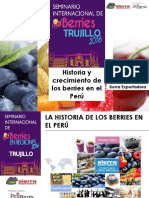 Miguel Cordano Historia Crecimiento Berries