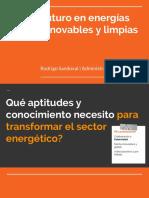 Futuro en Energia Renovables y Limpias