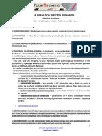 foca-no-resumo-direitos-humanos1.pdf
