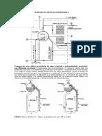 caldera2.pdf
