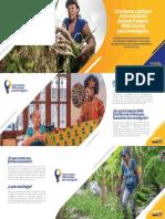DIGITAL Brochure Fondo Para La Investigacion WWB