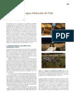 cap1 .pdf