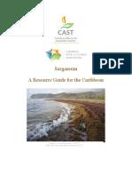 Sargassum Resource Guide Final 7-10-15