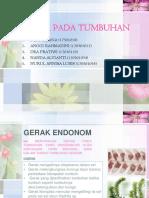 GERAK PADA TUMBUHAN.pptx