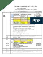 PROGRAMAÇÃO DE ADAPTAÇÃO.pdf